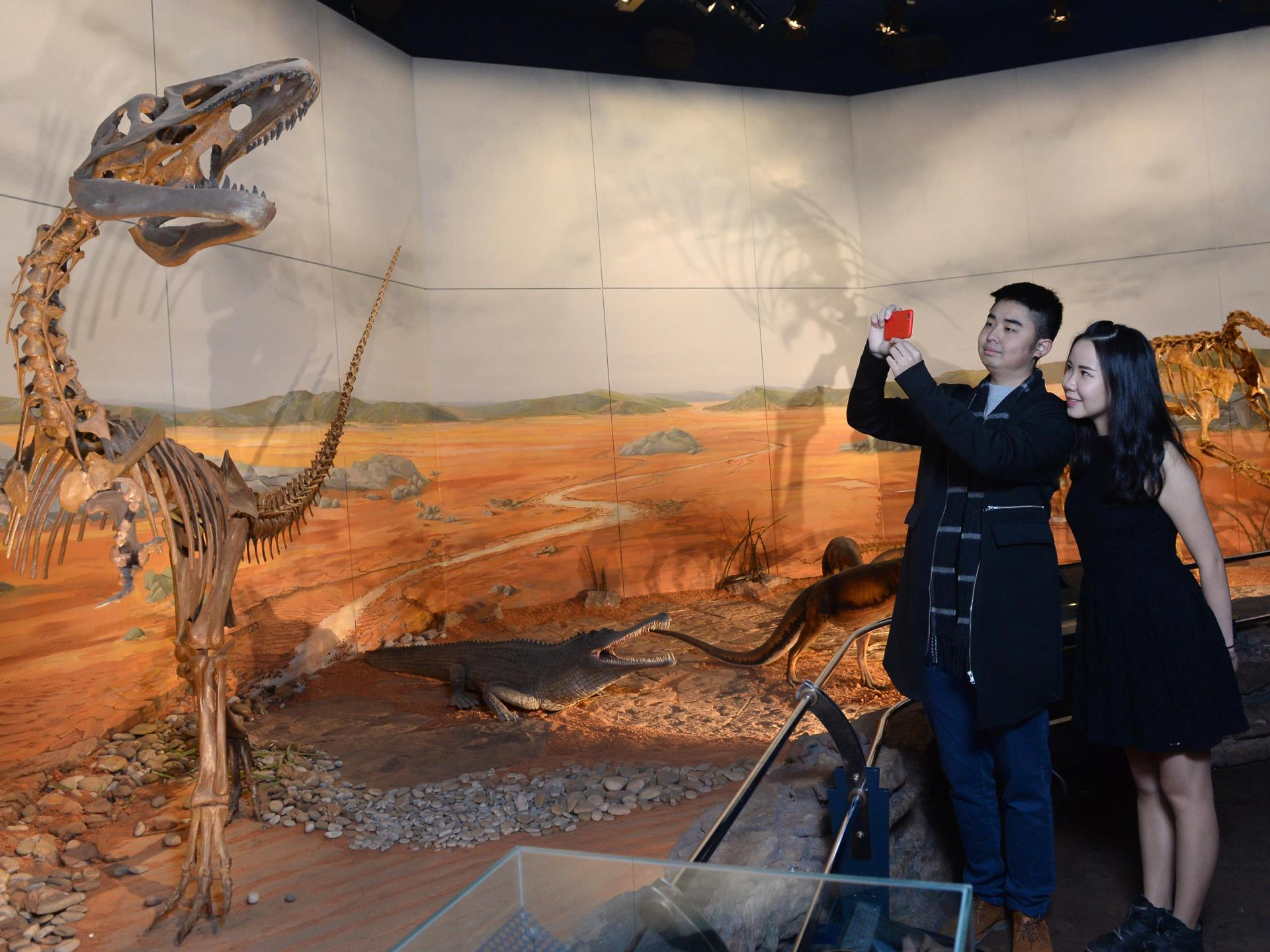 Evolution of Wales dinosaur