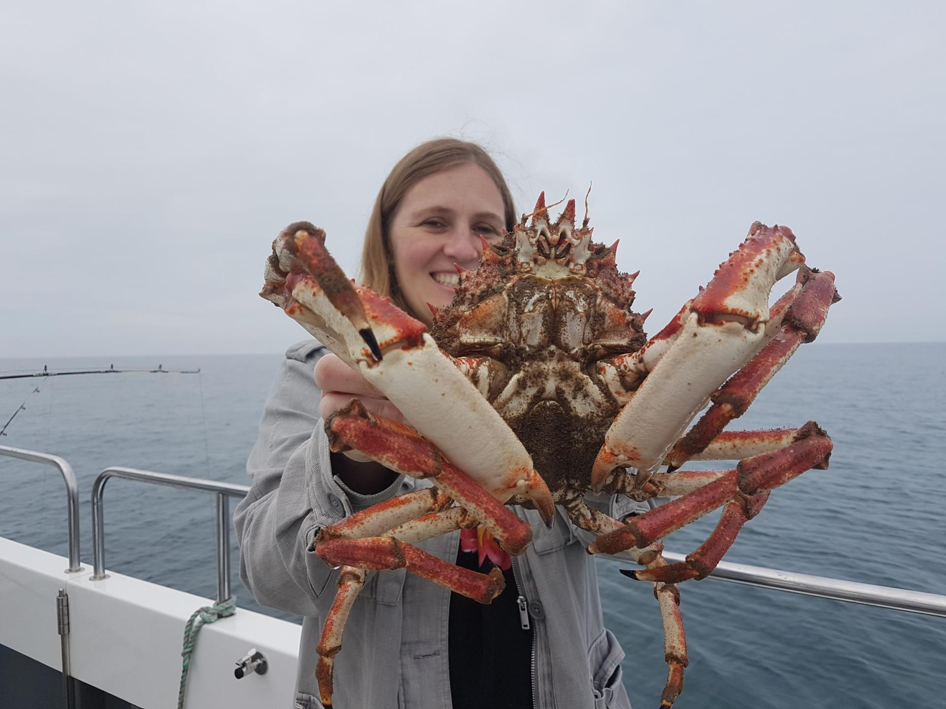 Massive spider crab on an Epic Fishing Trip