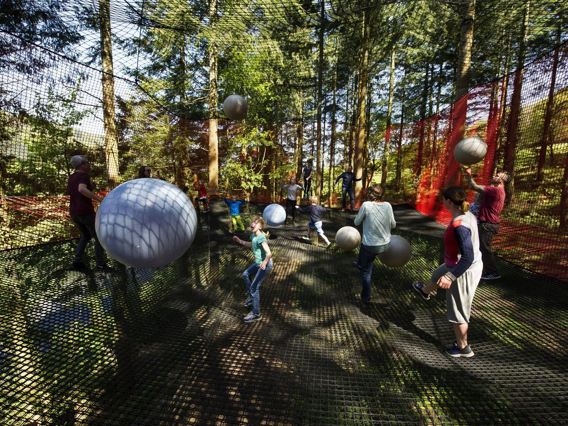 Hop, bounce and slide on Treetop Nets