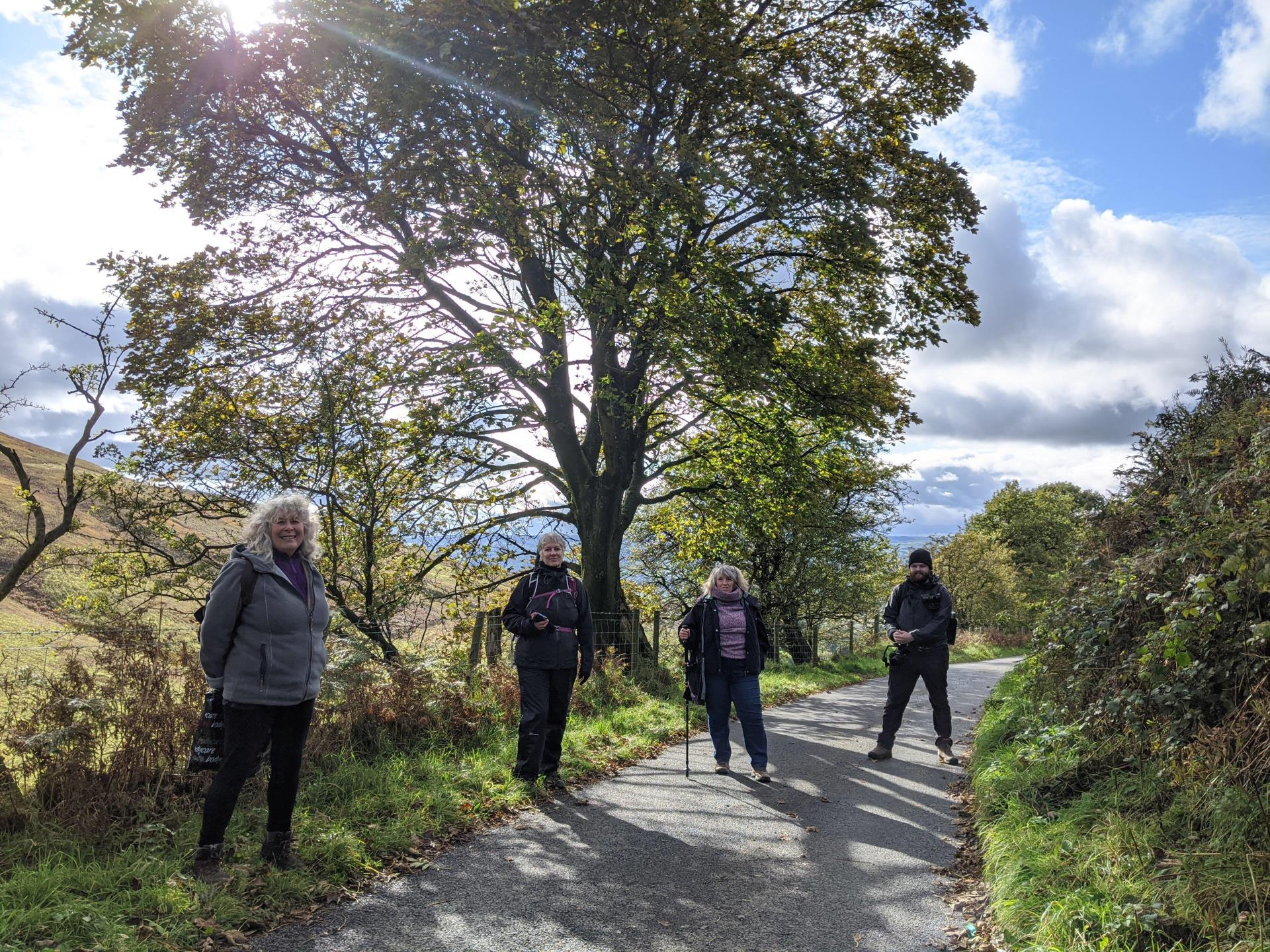 Learn mindfulness on a guided walk
