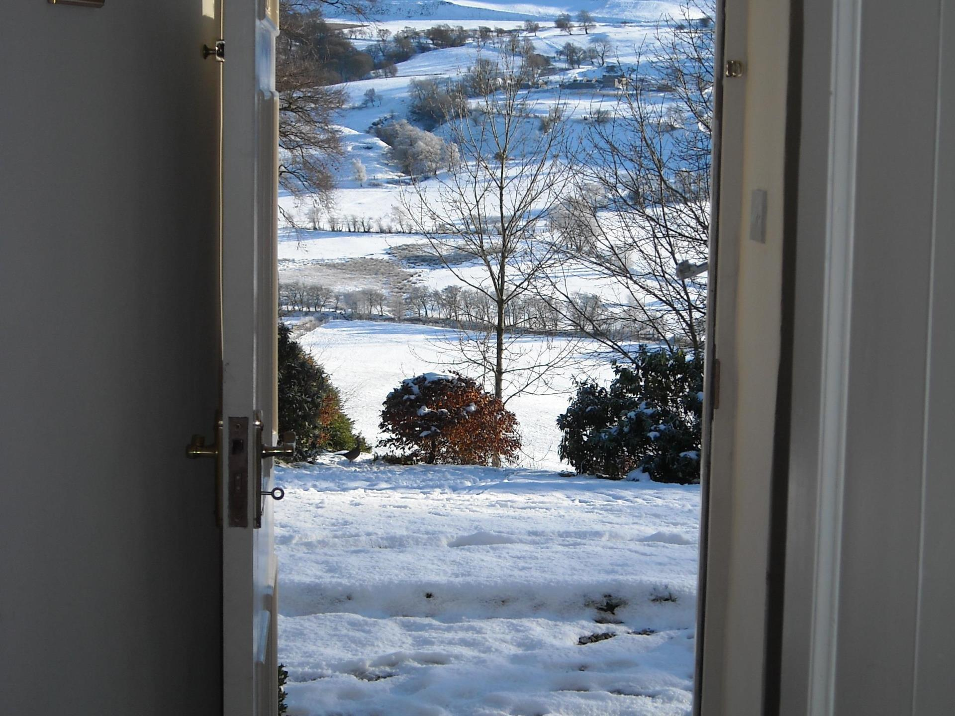View from front door with a flurry of snow