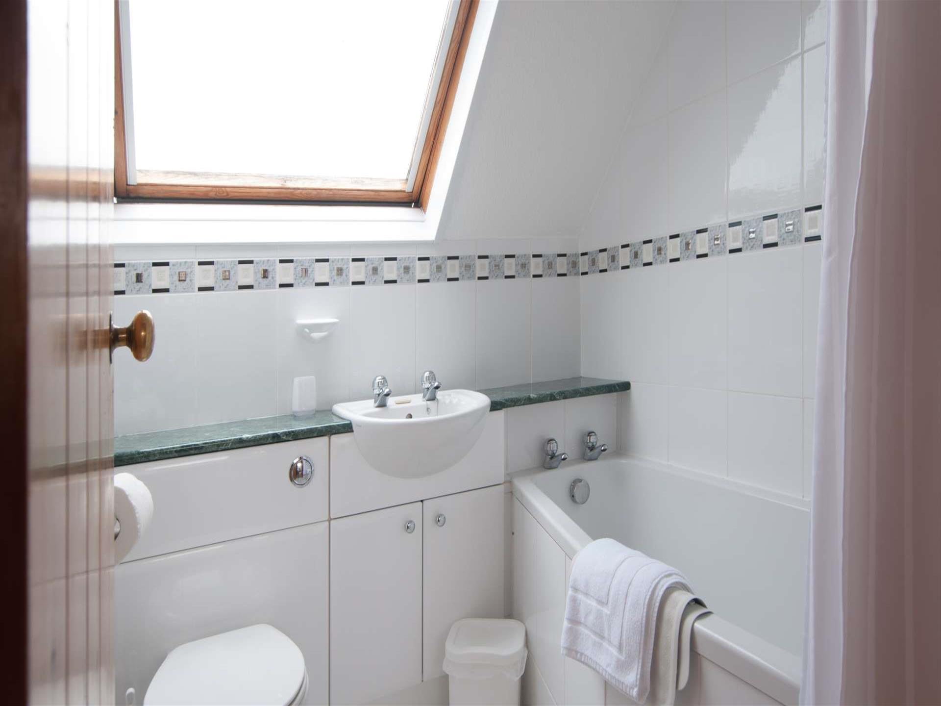 St Davids self catering - bathroom